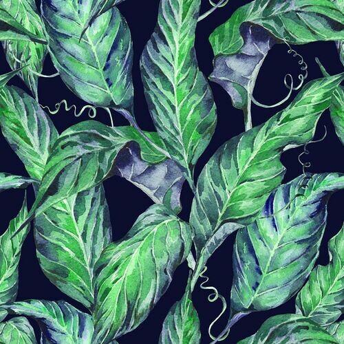 nowoczesne-tapety-scienne-egzotyczne-liscie