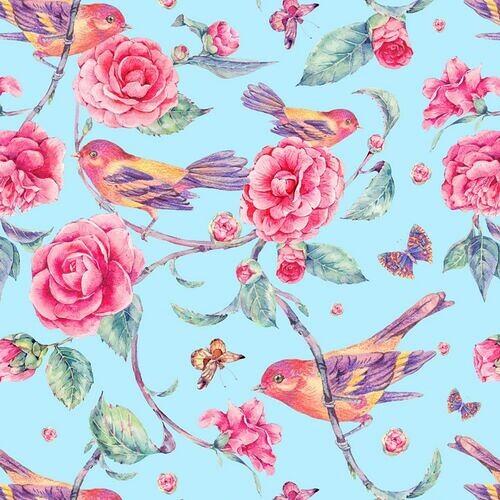 9fda05aa534c76 Tapeta flizelinowa. Ptaki siedzące na kwitnących kameliach na niebieskim tle
