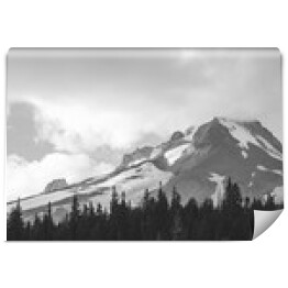 Mount Hood and Forrest w B & W