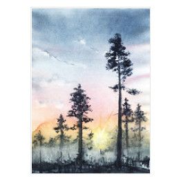 Silhouettes of age-old pines, Through the trunks can see the setting sun. Gradient of the sky from gray-blue to orange. Fog grows in the forest. Hand drawn on a wet paper real watercolor illustration.