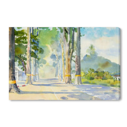 Watercolor painting of Tunnel trees in village.
