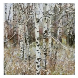 Oil painting. Art print for wall decor. Acrylic artwork. Big size poster. Watercolor drawing. Modern style fine art. Beautiful birch forest landscape.