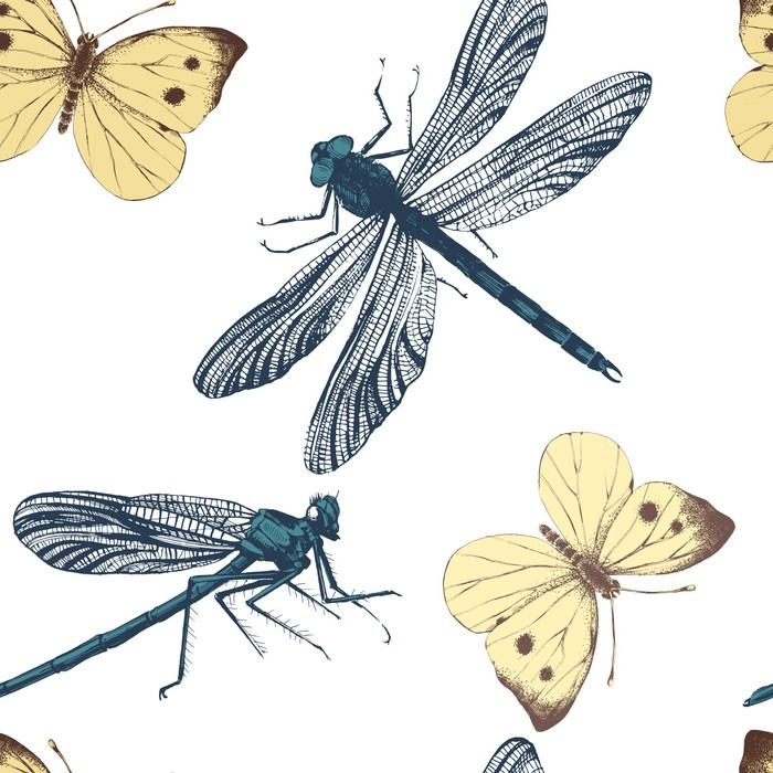 wzór z ważki i motyle
