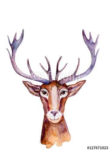 Akwarela Jelenia Ręcznie Rysowane Kreskówka Malarstwo Ilustracja Na Białym Tle Dzikie Zwierzę Z Zakrzywione Rogi Maskotka Głowa Postać Projekt Dla