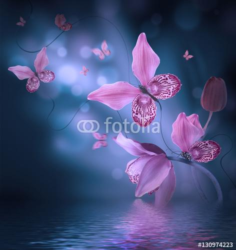 Niesamowite motyle z płatków orchidei, kwiatowy tło. Kwiaty i owady.
