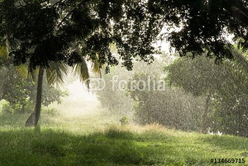 tropikalny prysznic, gdy świeci słońce