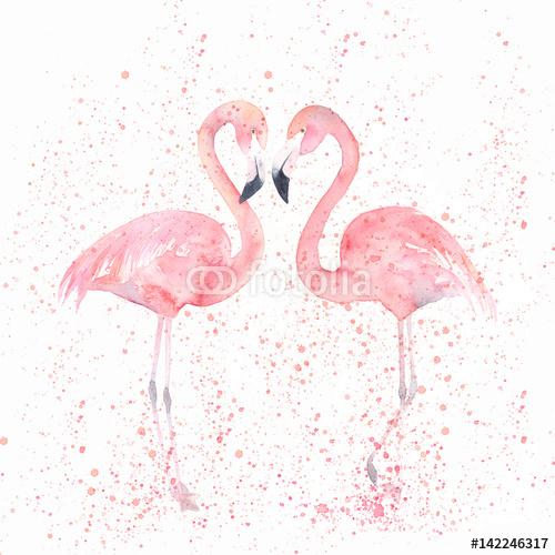 Akwarela Flamingi Z Splash Malowanie Obrazu Obrazy Na Płótnie