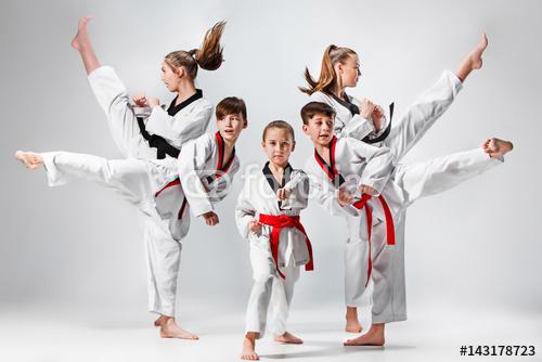 Grupa Dzieci Trenujących Sztuki Walki