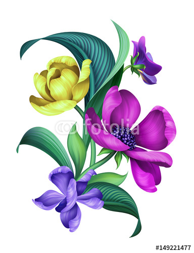 botaniczna ilustracja kwiatowy, nowoczesny ornament, bukiet dzikich kwiatów, na białym tle
