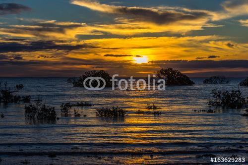 Złoty zmierzch przy Weeroona wyspą lokalizować w Germein zatoce Południowy Australia