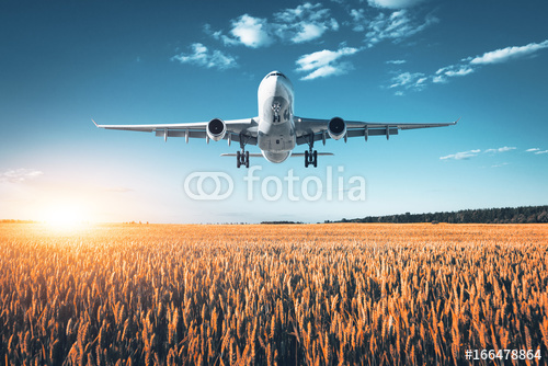 Niesamowity Samolot Krajobraz Z Dużym Białym Pasażerskim Samolotem Lata W Niebieskim Niebie Nad Pszenicznym Polem Przy Kolorowym Zmierzchem W Lecie