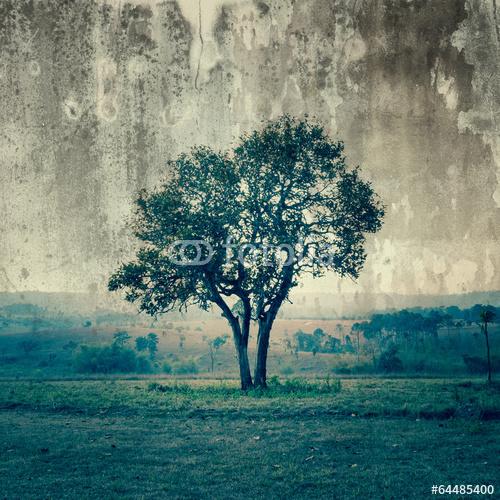 Samotne drzewo z romantycznej powieści