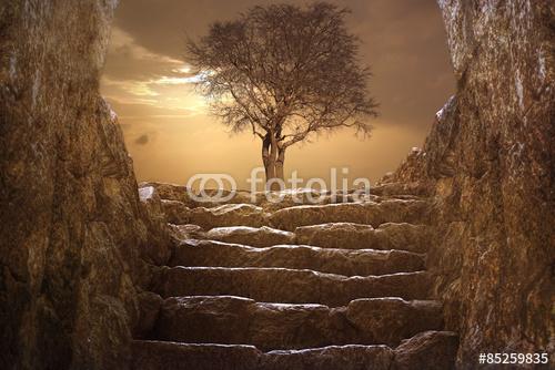 Wielki krajobraz z drzewa